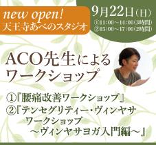 2019年9月22日(日)ACO先生によるワークショップ