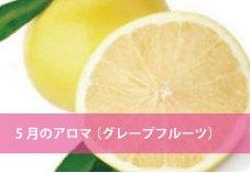 5月:グレープフルーツ