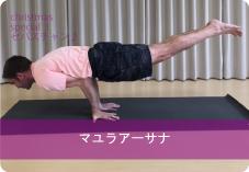 マユラアーサナ| セバスチャン先生から学ぶ クリスマススペシャルポーズ!体幹を鍛えよう!