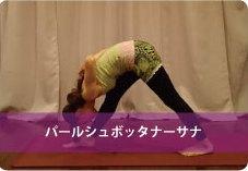 パールシュボッタナーサナ| 脚の引き締め!体幹強化!