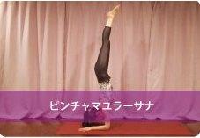 孔雀の羽のポーズ(ピンチャマユラーサナ)| 人気ヨガインストラクターnaomi先生のヨガポーズ集