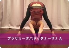 プラサリータパドッタ| 脚全体を引き締めるので、美脚を目指す方へおススメ!