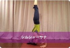 頭立ちのポーズ(シルシャーサナ)| 集中力、バランス力向上!