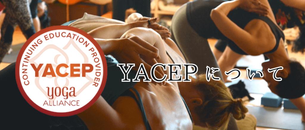 YACEP(全米ヨガアライアンスの新教育制度について)