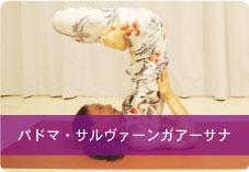 【パドマ・サルヴァーンガアーサナ】| 足に溜まった血液を送り出し足の疲れ解消!