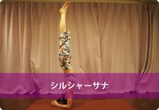 【シルシャーサナ】| 重力の圧力から内臓を解放し、逆向きにする事でデトックス効果!