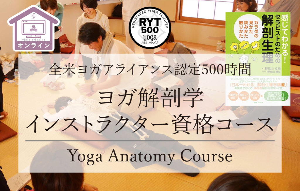 【オンライン開催】ヨガ解剖学コース